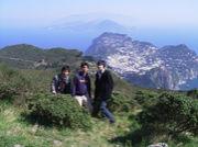 カプリッチョ イタリア 丸山組