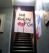 BAR GOLDEN FISH