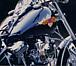 "Harley-Davidson""WindJammer"""