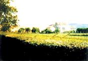 ☆和歌山信愛2006年卒業☆