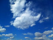ふと青い空を見上げると♪