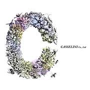 キャセリーニ -casselini-