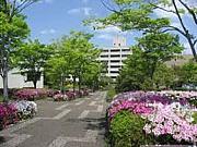 兵庫教育大学2012年新入生