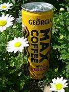 GEORGIA MAX COFFEE【補給】