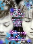 Yumi  Domoto  Love  is  KinKi