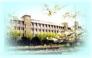 松原市立松原第六中学校