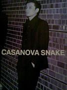 CASANOVA SNAKE