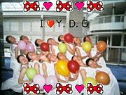 ◆  Y  D  C  ◆