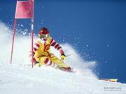 arcadia ski racing team