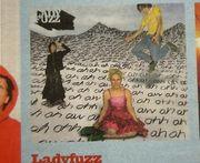 Ladyfuzz
