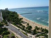『競馬でハワイ旅行』