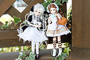 PARABOX doll