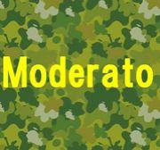 Moderato(もで)