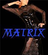 【 MATRIX 】