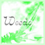 Weeds-雑草-