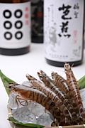 日本風居酒屋 芭蕉