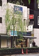 洋菓子舗ウエスト 銀座店