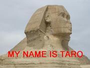 愛犬の名は太郎です