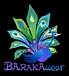 BARAKA spirit