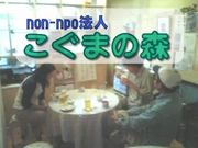 non-npo法人 こぐまの森