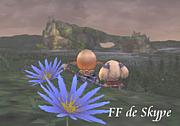 FF11 de Skype