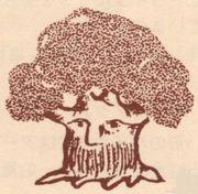 「木のひげ」