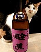 富久千代酒造「鍋島」