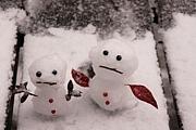 雪で世界平和を目指す会