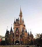 Disney撮影隊