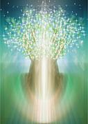 Healing Space BROOM