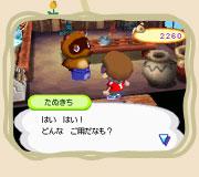 ☆【Wii&DS どうぶつの森】☆