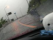 雨の運転好きな人!