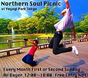 Northern Soul Picnic