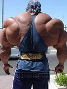 Legend of muscle silny
