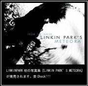 ★叫び声....LINKIN PARK★