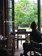 a little bit の会