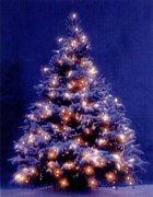 クリスマスソングズ セッション