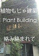 植物もじゃ建築  Plant Building