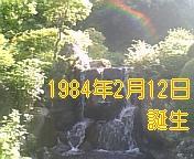 1984年2月12日生まれの会