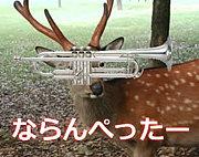 奈良のトランペッターの集い