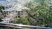 勉強会(兼読書会)@聖蹟桜ヶ丘