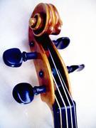 即興演奏(弦・鍵盤)
