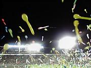 阪神ファンでオフ会しませんか?
