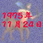1975年11月24日生まれ