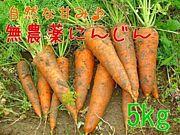 Foods Bar Carrot