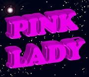 ピンクレディー セッション