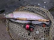 釣師乃解釈