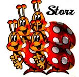 Storz Chocolate