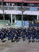 めばえ幼稚園 広島の