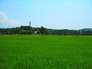 佐賀県東部コミュニティー